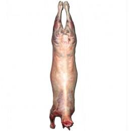 Petit agneau entier 10-13 kg (Espagne)