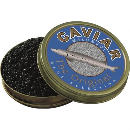 Caviar Tradition Prestige d'esturgeon blanc (Italie)