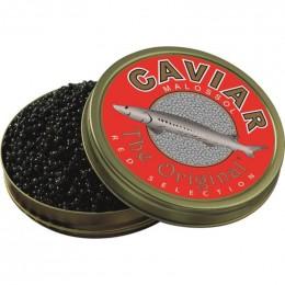 Caviar Sibérien Classic d'esturgeon sibérien (Italie)