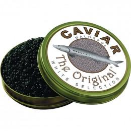 Caviar Beluga d'esturgeon beluga (Italie)