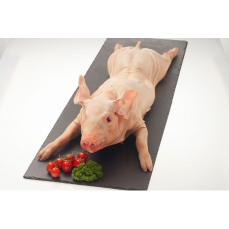 Cochon de lait de 6.5 à 8 kg surgelé (Allemagne)